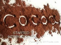 ALKALIZED COCOA POWDER 4