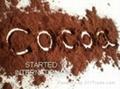 BLACK COCOA POWDER 3