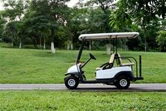 4人座電動高爾夫球車