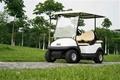 4人座电动高尔夫球车 2