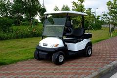 2人座電動高爾夫球車