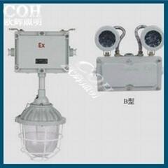 ZBAJ52系列防爆应急灯(ⅡB、ⅡC)