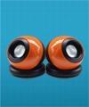 Carry-home speaker