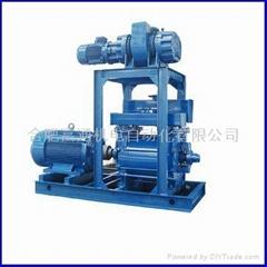 ROM. Watts vacuum pump