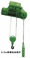 宏森特荷兰环链电动葫芦完美供应