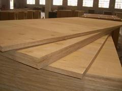 全桦木胶合板