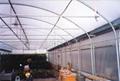 農膜 農用薄膜