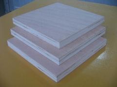 杨木胶合板