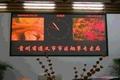 P4 indoor double color display screen