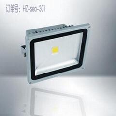 海洲LED亮化工程投光燈301
