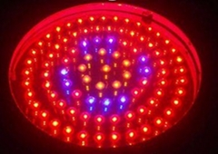 90W UFO LED Grow Lights