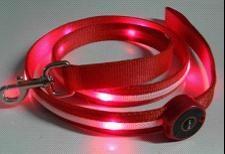 LED light dog leads