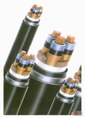 YJV22高壓電纜