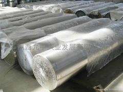 titanium ingot Gr1