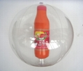 Beach Ball with Bottle Inside 4