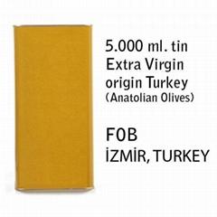 Offer for Turkish Extra Virgin Olive Oil (5 lt tin)