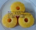 Pineapple peeler and corer      2
