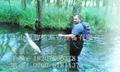 專業捕魚杆鋁合金打造捕魚抄網杆 5