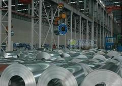 HDG steel coil