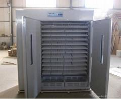 incubator for chicken eggs