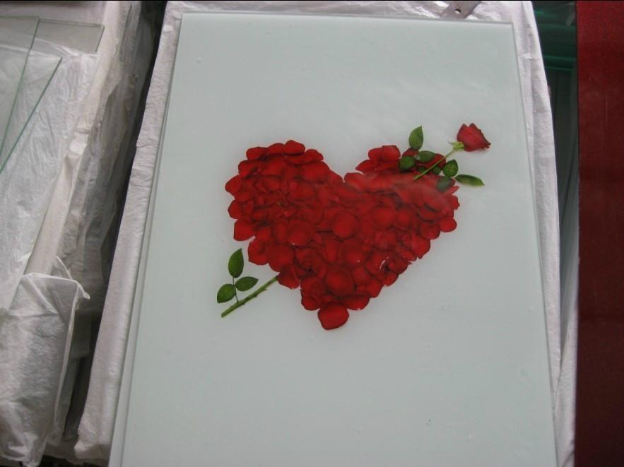 廠家直銷 藝朮彩晶玻璃數碼平板打印機 2