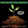 seaweed extract for organic fertilizer 2