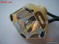 投影機燈泡 2