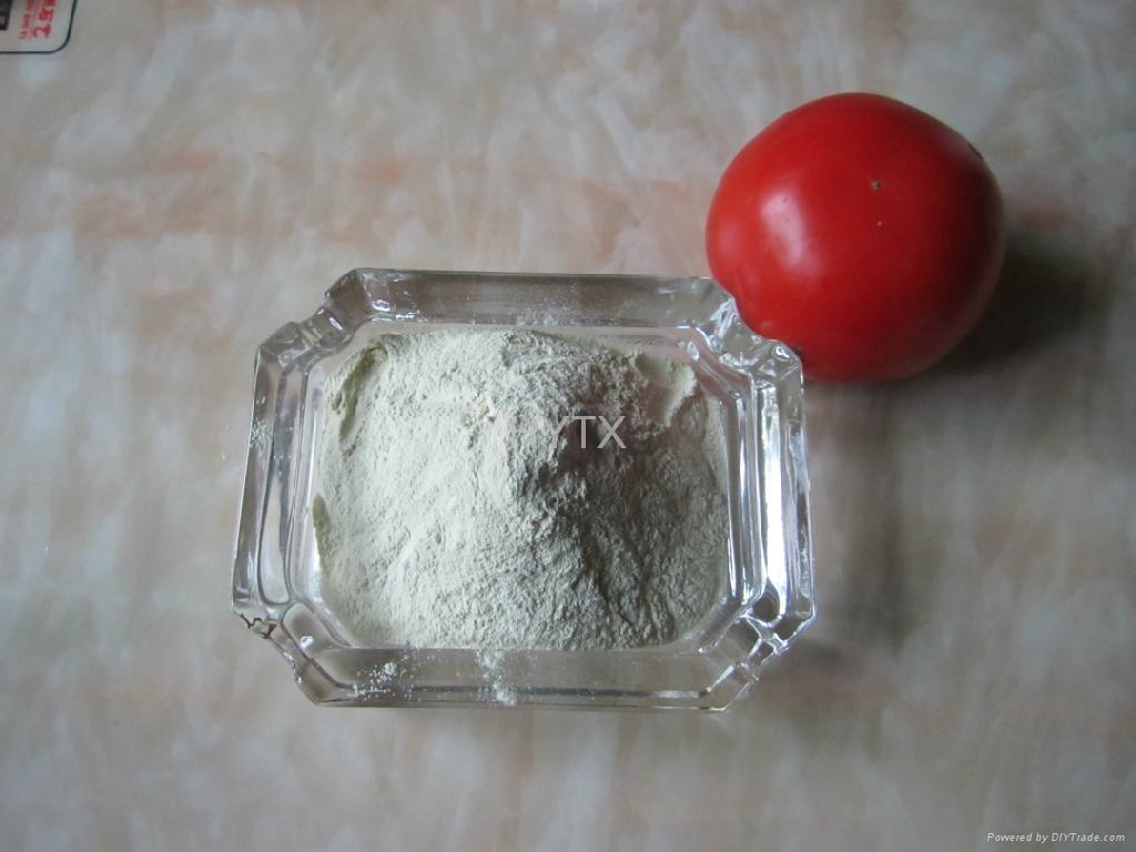 Ferrous sulphate monohydrate FeSO4 H2O 91% 1