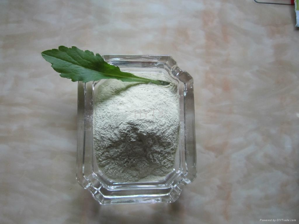 Ferrous sulphate monohydrate FeSO4 H2O 91% 2