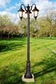 帝輝燈飾DH-4279-3 1