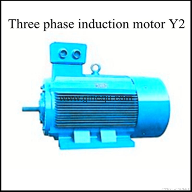 Three phase induction motor y hmesfac china for Three phase induction motor