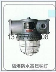华平供应DGS70/127N型矿用隔爆型高压钠灯