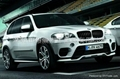 2010-2012BMW X5 Performance style