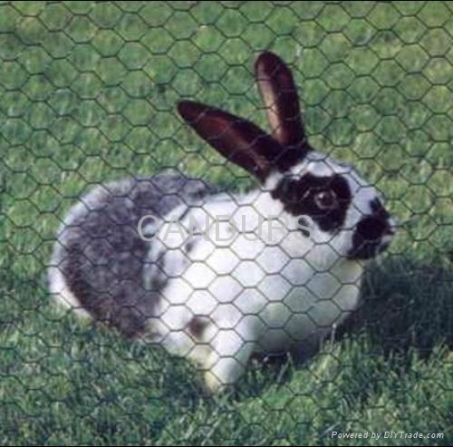 Rabbit Wire Fencing