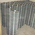 Stainless Steel Welded Wire Mesh Roll-Welded Wire Mesh Panels