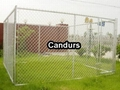 Chain Link Dog Kennel-Chain Link Dog Run-Dog Fencing Panels