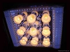 廣東中山市  款式家居照明水晶燈