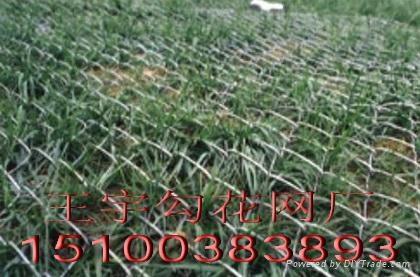 围墙铁丝网 1
