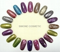 MAGNETIC NAIL ART COLOR CHART