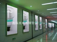 G60 42/36/30 LED 球泡燈