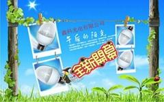 H54P 蛋形LED 球泡燈