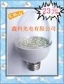 H54P 鵝蛋型LED球泡燈