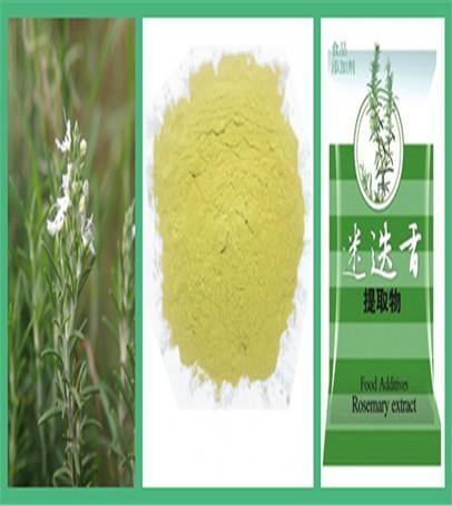 迷迭香抗氧化剂(脂溶性) 1