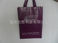 Reusable non woven bag 2