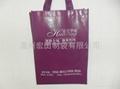 Reusable non woven bag 3
