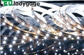 12V SMD 3528 300 LEDs White led flexible strip light (Hot Product - 1*)
