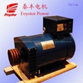 Brush generator alternator with Single phase or Double phase meet price market.