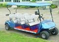 高尔夫球车销售 1
