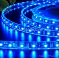 decorative LED flexible light strip