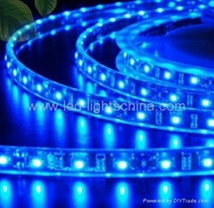 decorative LED flexible